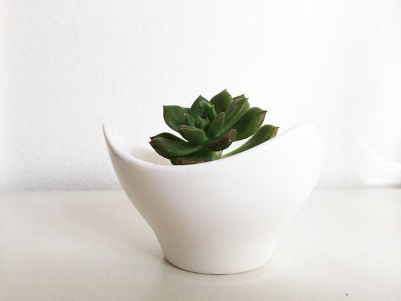 White Ceramic Pot Succulent Plant Succulent Planter Mini