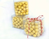 LiTTLe Clear Boxes-----2x2x2--10ct---party favors--add gum balls, cake balls, truffles, candy