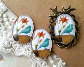 2 Pieces of 18 x 25 mm Oval Shape Messenger Bird Photo Glass Cameo Cabochons (L) ( .au)