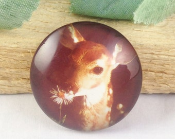 4pcs 25mm Round Handmade Photo Glass Cabochon - Sika Deer