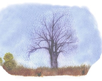 Botanical Watercolour Card Blank Cottonwood Tree in Pencil and Watercolor