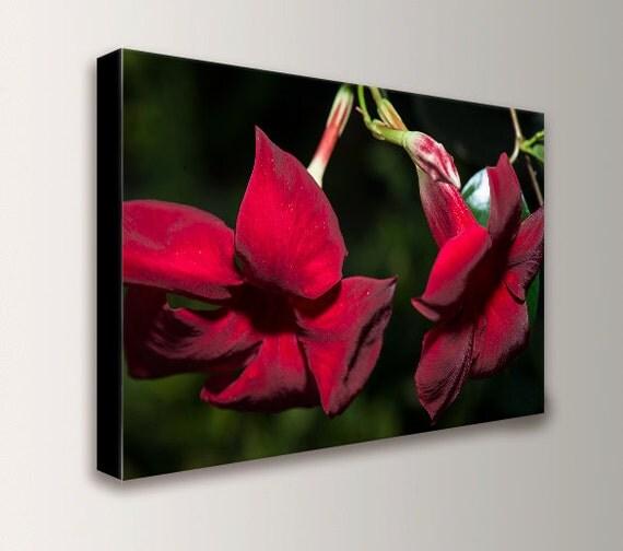 "Red Wall Art - Flower Art - Photography - Canvas Print - Red Flower Art - "" Red Flowers """