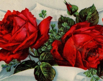 Colorful ANTIQUE Red And Green Rose Birthday Greetings Postcard 1910s Cancelled Franklin PA 1911