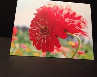 Intertwined Flowers Folded Photo Note Kard