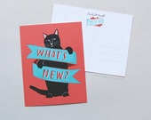 What's New Pussycat Postcard Set of 10 / Cat Postcards, Cat Postcard Set