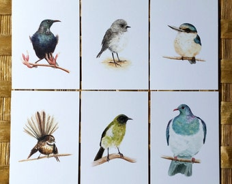Mixed Birds - a gorgeous pack of 6 postcards on recycled card stock