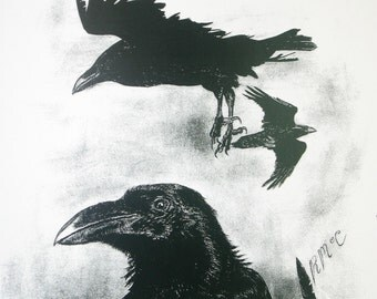 Signed Wildlife Print - The Raven