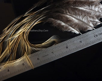 Natural Golden Badger Whiting Feathers Mottled Brown Coq De Leon Rooster Saddle Hackle Long Feather Wet Flies 10pcs, 7-9inch