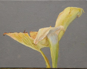 """Oil painting original 9""""x12"""" on canvas. Calla Lilly still life,Almost gone. Jan Smiley"""