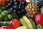 Needlepoint Canvas and Thread Kit Fruits by Pepita