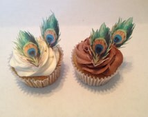 Edible Peacock Feather Cupcake and Cake Accents