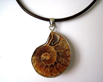 ammonite  necklace  very cool!!