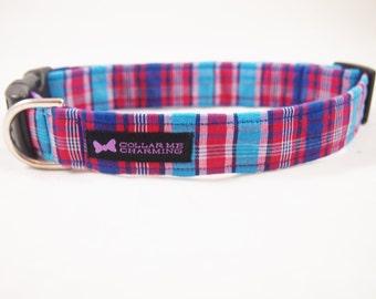 Dog Collar Drew