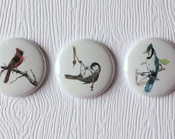 "3 badges 1 ""birds winter"