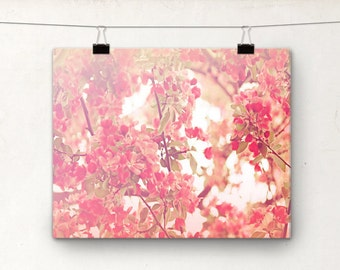 Bloom, 8x10 Photography Print, Pink Cherry Tree Nursery Art, Baby Girl