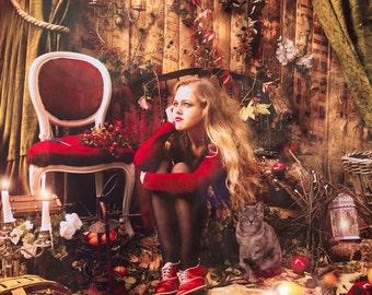 "Postcard photography art ""My Christmas cabin"""