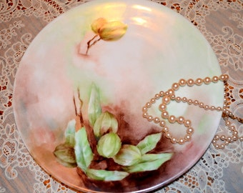 SALE - Beautifully Hand Painted T&V France Plate