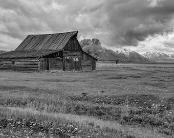Landscape Photography - Fine Art Photograph - Mormon Row  - Stacy White Photography