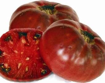 50 Heirloom Tomato Seed - Cherokee Purple - Heirloom Cherokee Tomato Seeds, Purple Tomato Seeds, Non-gmo Tomato Seed, Indeterminate Tomatoes