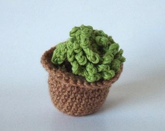Amigurumi: Sempervivum 'Hen & Chicks' cactus crochet. Un jardin exotique éternel
