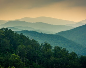 The Blue Ridge Mountains, seen from Skyline Drive in Shenandoah National Park, Virginia - Photography Fine Art Print or Wrapped Canvas