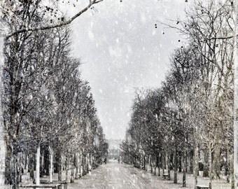 Paris Photography, Paris Art, Paris Prints, French Art, French Photo, Paris Park,  Paris Winter, Paris Photo, Print, Photo, France, Paris
