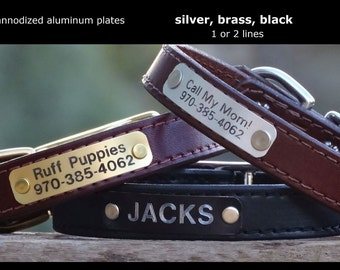 personalized name plate to be added to any of our leather dog collars / silver, gold, black / anodized aluminum