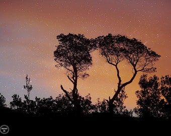Amber Skies, Star Photography, Abstract photography, Night Photography, Dusky Evening Photos, Sunset Photography, Australia Star Photos
