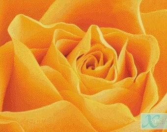 Yellow Rose PDF Cross Stitch Pattern