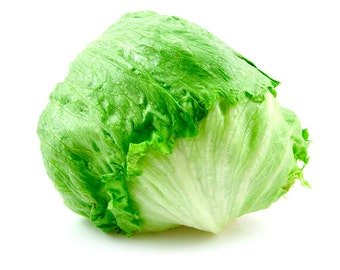 1,000 *HEIRLOOM* Iceberg Lettuce Seeds
