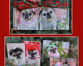 8 PUG CARD Gift PACK 5x7 by Pugs and Kisses