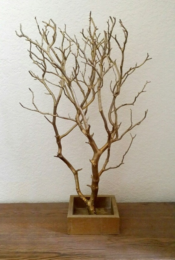 19 gold jewelry tree branch with wooden box stand for Tree branch jewelry holder