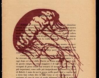 Pag. 21, Medusa, red dust color