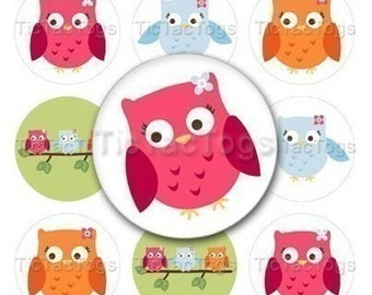 Owls Edible Cupcake Topper Decorations - Set of 12 Toppers