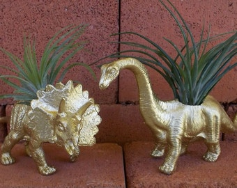 Dinosaur Planters GOLD Brontosaurus + Triceratops + Air Plants Home Décor, Gold Dinosaur, Desk Accessory, Dorm Room, Gold Dinosaur, Guy Gift
