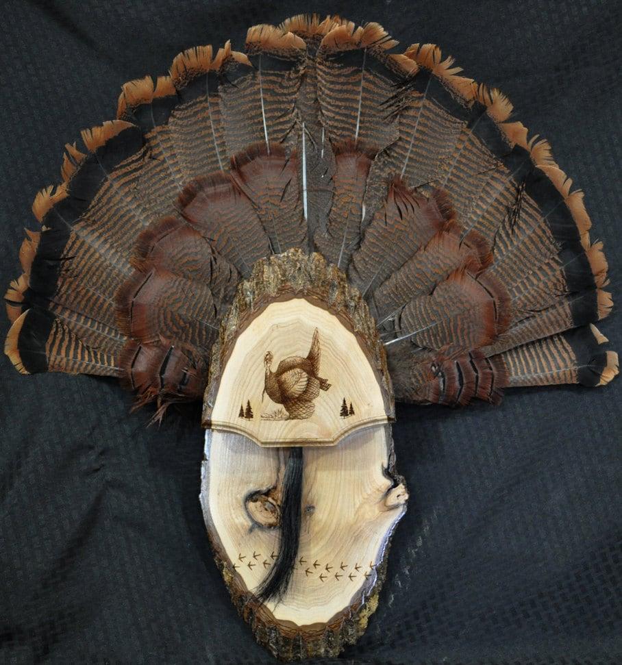 Turkey Fan Turkey Hunting Turkey Fan Mount Board Live
