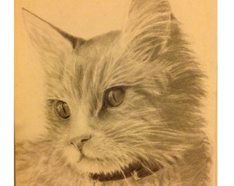 Custom Pet Portraits  Coupon code: 50PERCENTOFF will give a first time buyer 50% off!