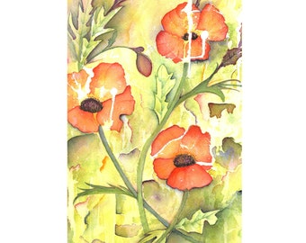 Poppy in Bloom  -  Abstract Watercolour Painting - Fine Art Prints and Greetings Cards