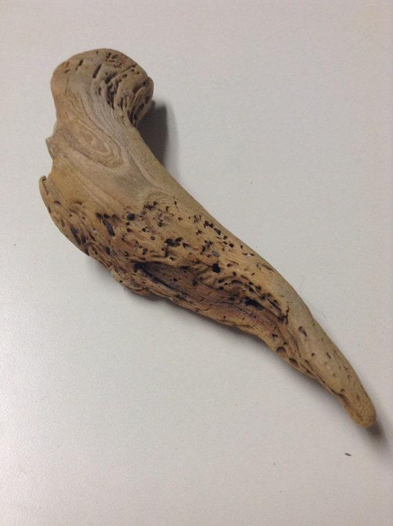 unique petit morceau de bois flott avec beaux marquages On morceau de bois flotte