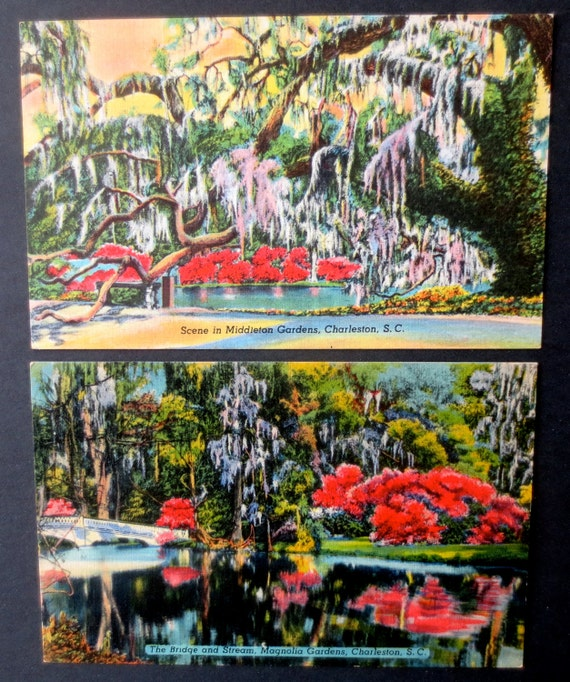 Vintage Charleston South Carolina Postcards - 1940s
