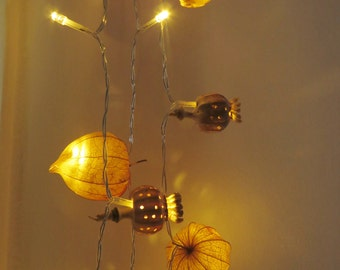 50 fairy lights handmade with locally sourced natural materials, string light, battery operated
