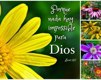 SPANISH BIBLE VERSE Photo Cards - Espanol - Set of 5 Cards - Suitable For Framing
