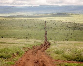 Lewa Kenya Africa