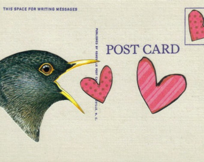 Love Bird Artwork, Bird Lover Art, Heart Postcard
