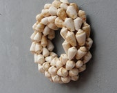Seashell Wreath Coastal, Beach Decor, Shell Decoration Natural Display Piece