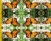 Monarch Butterfly Garden - Fat Quarter Fabric