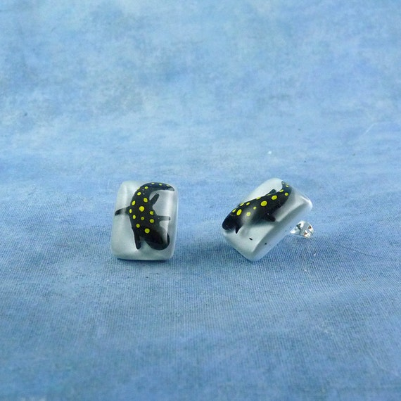 Spotted Salamander Encapsulated Specimen Earrings, Handmade Biology Jewelry