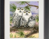 Owl Tree with Snow Owls- archival watercolor print by Tracy Lizotte
