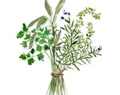 Herbs Bouquet print, Kitchen art, Botanical print, Parsley Sage Rosemary and thyme,  mothers day Valentine,  watercolor print, green herbs