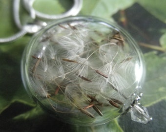 Ride The Wind-Wispy Dandelion Seed Glass Reliquary Terrarium Coin Shaped Orb Pendant-Gifts Under 35-Symbolizes Happiness, Affection, Desire